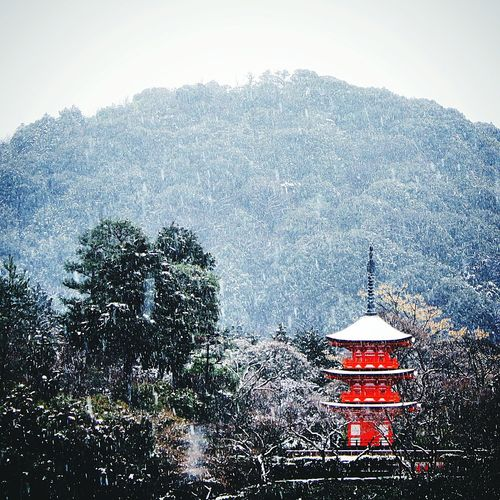 Kyoto Kyoto, Japan Kyoto City Japan Japan Photography Japanese Temple Japanese Architecture Snow Snow ❄ Snowy Snow❄⛄ Snowfall Winter Wintertime Winterscapes Winter Landscape Winter_collection Winter Wonderland Red Landscape Architecture Architecture_collection Eye Em Best Shots EyeEm Gallery