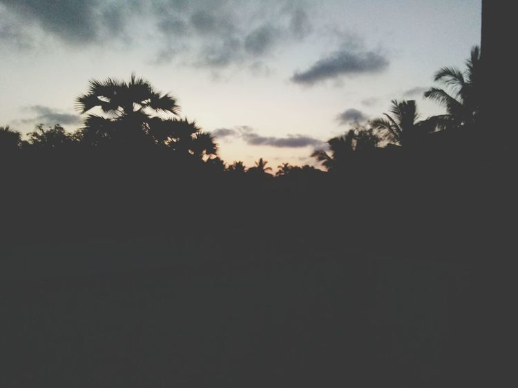 🌇 tried to shoot the sunset but I'm late No Sunset Late Photography Failed Nature