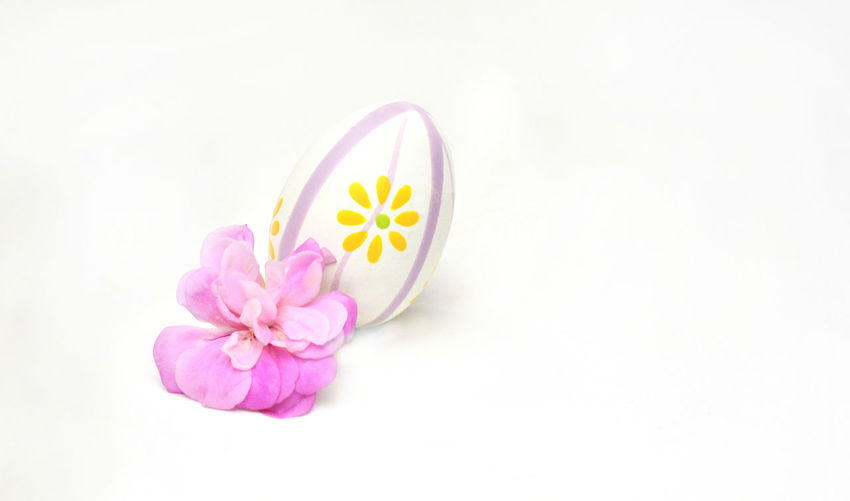 Close-Up Of Easter Egg And Flowers Over White Background