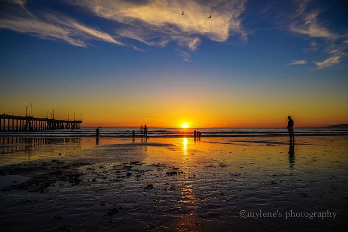 Sunset in Venice Beach Sunset Beach Water Sea Sky Scenics Beauty In Nature Tranquil Scene Sand Silhouette Real People Outdoors Shore Nature Full Length Tranquility Reflection Horizon Over Water First Eyeem Photo