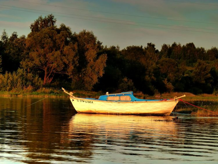 Boat Boats⛵️ Exceptional Photographs Eye4photography  EyeEm Best Shots EyeEm Gallery EyeEm Nature Lover From My Point Of View From Where I Stand Getting Inspired Jezioro żywieckie Lake Lake View Outdoors Poland Reflection Sailing Tranquility Water