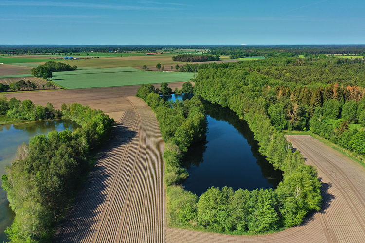 Aerial view of a small dark blue pond with high trees on the bank between fields