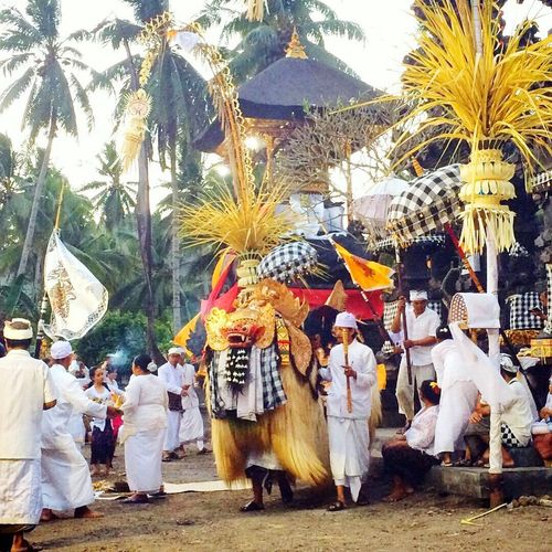 GaLungan is the day to celebrate the winning of Dharma (good) againts Adharma (evil) Galungan Celebration Hindu Bali Culture Tradition