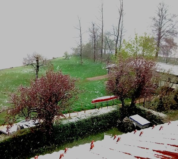 Kuschelwetter View Out Of The Window Lake View View From The Window... Outdoors Springsnow Spring Snowing