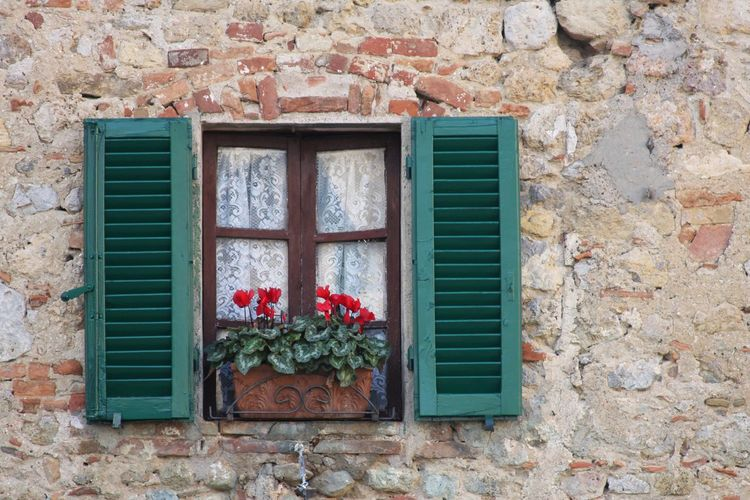 Flower pot on house window