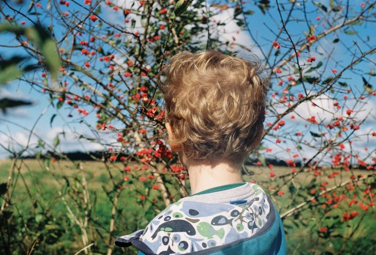 Rear view of boy against plants