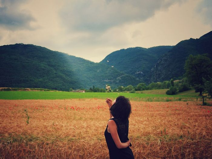 Woman holding dried flowers at agricultural field against mountains