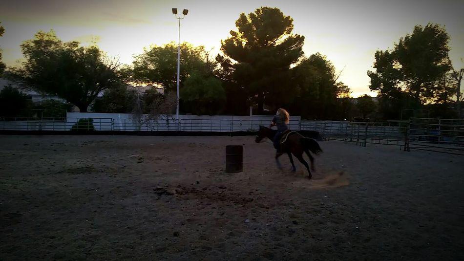 Barrel Racing Enjoying Life Awww Summer Sky Horse Indie