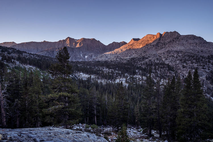 And yet here I was | JMT DAY 23 - SUNRISE AT SAWMILL PASS JUNCTION Sunrise at Sawmill Pass Junction Morning at Sawmill Pass Junction was windy and cold. I crawled out of my tent and walked back to the spot where I caught the sunset the day before. There were two different directions that I could point my cameras at. One being the crest led by Acrodectes Peak (13,182 ft), just like I did the day before, and the other being the valley where Woods Creek ran through. And it was the direction where we were headed. Again, no clouds in the sky. I set up my camera and simply waited for the sun to cast its glow on the crest. And it did. The intense colors got me excited. But what I really loved more was the solitude that I was enjoying. It is often a lonesome landscape photographer's journey taking photos by him/herself, but I have grown to love the sense of being there. Belonging in nature, where I would soon to return. The idea of accepting the fact that we are extremely vulnerable and easily swayed by the comfort and warmth that the civilization provides seemed as natural as drinking water when thirsty. And yet here I was still tolerating the discomfort and trying to capture the moment that makes it all simply worthwhile. Sawmill Pass Junction, Kings Canyon National Park, CA Mountain Sky Beauty In Nature Scenics - Nature Tree Tranquil Scene Mountain Range Tranquility Non-urban Scene No People Nature Clear Sky Environment Idyllic Landscape Remote Outdoors Mountain Peak Forest JMT Pct Wilderness Adventure Mountain Crest