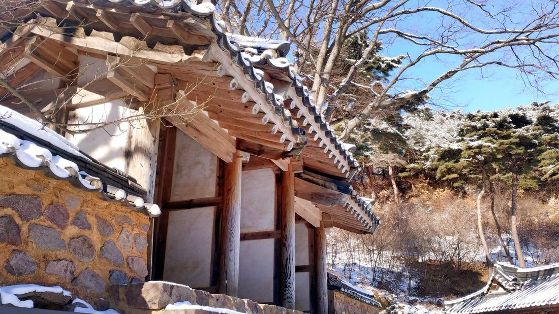 Tradional Fence Gates And Fences Korean Traditional Architecture Tranquil Scene Tree Built Structure No People Day Winter Nature Cold Temperature Outdoors Snow Architecture Low Angle View Branch Sky Beauty In Nature