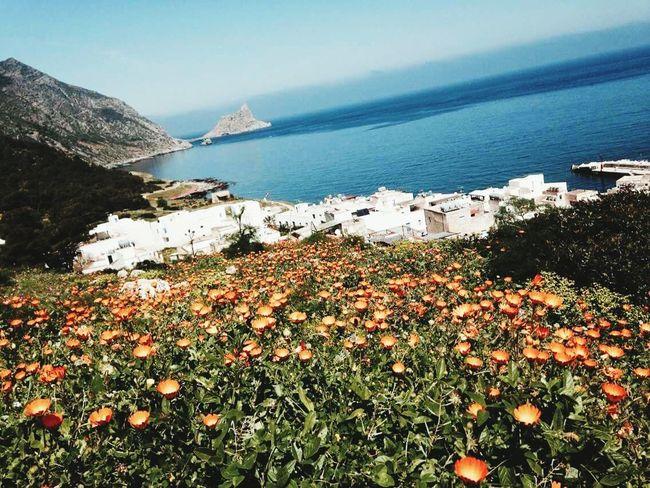 Marettimo Isole Egadi Sicilia Showcase June Sicilia Mare E Sole Marettimo Island