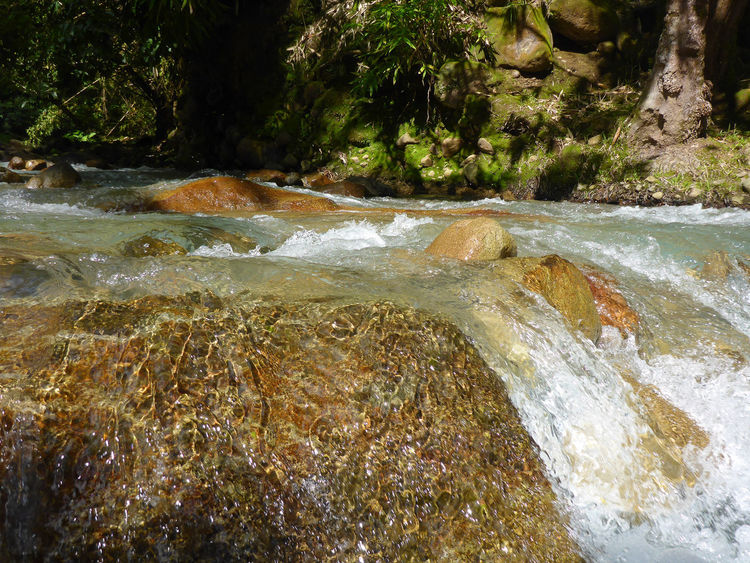 Mainit Hot spring Brook Beauty In Nature Close-up Day Nature No People Outdoors Rocks Tree Water Waterfall