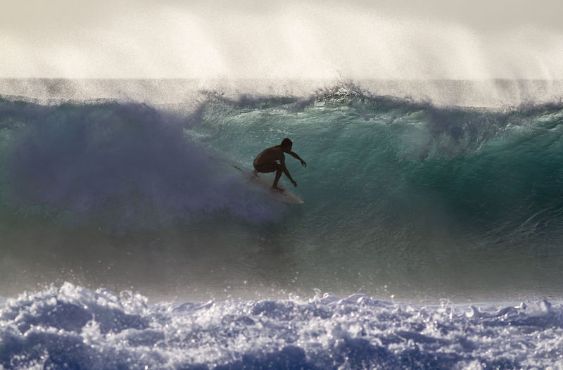 Back lit Surfer riding a Wave Blue Wave Hawaii North Shore Oahu Silhouette Adventure Aquatic Sport Back Lit Beauty In Nature Extreme Sports Full Length Leisure Activity Lifestyles Men Motion Nature One Person Outdoors Power In Nature Real People Sea Skill  Sport Surfing Water Wave