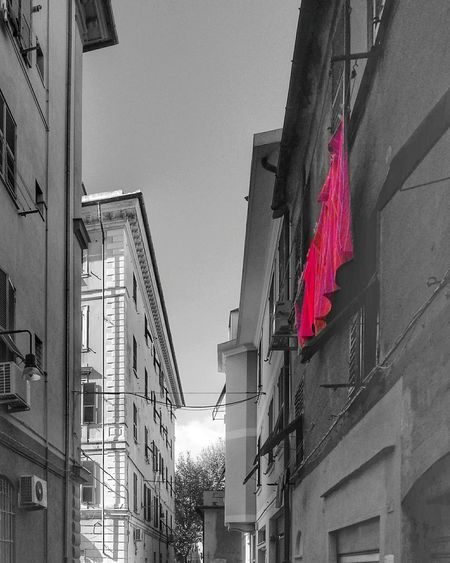 Red Panni Stesi Drying Laundry Hanging Fucsia Building Exterior Architecture Residential Building Low Angle View Built Structure No People Day City Sky Outdoors Genova . Colour Splashdone by Pixlr. Smartphone Photography Note 2 Android Photography