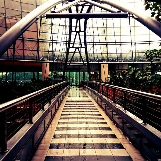 Shopping mall with extra excitement inside. Tropical rainforest and rooftop garden. Architecture Kuala Lumpur Malaysia  Oneutama