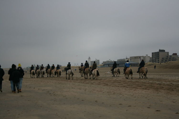Beach Boulevard Horse Large Group Of People Outdoors Sand Sky