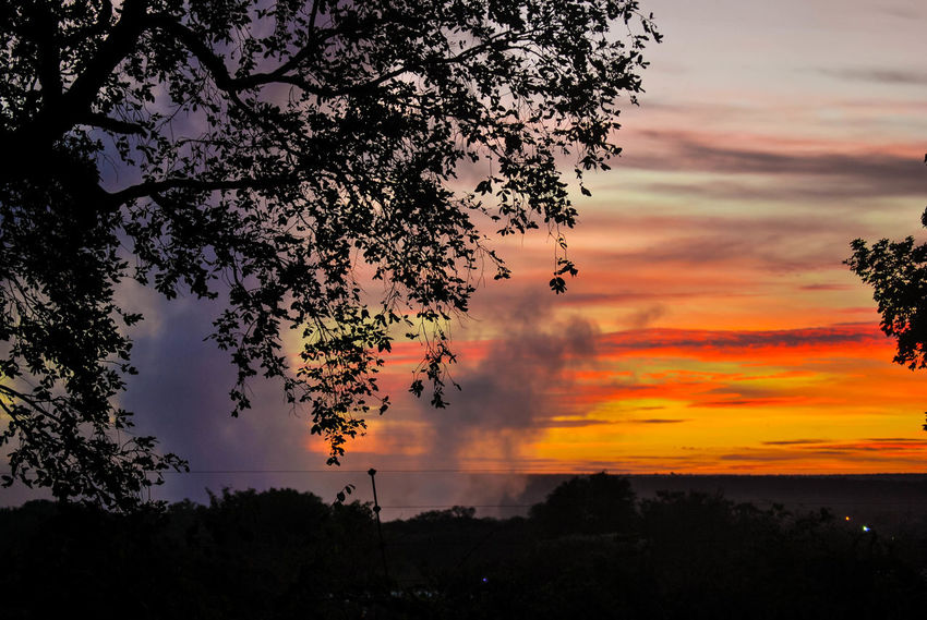 Beauty In Nature Cloud - Sky Day Dusk Growth Nature No People Outdoors Scenics Silhouette Sky Sunset Tranquil Scene Tranquility Tree