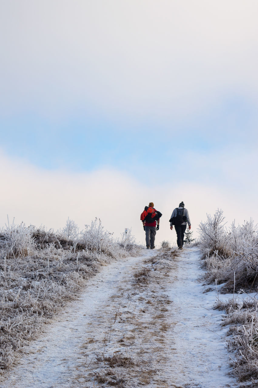 winter, walking, nature, real people, cold temperature, snow, rear view, full length, sky, two people, outdoors, field, beauty in nature, day, men, adventure, togetherness, scenics, clear sky, people