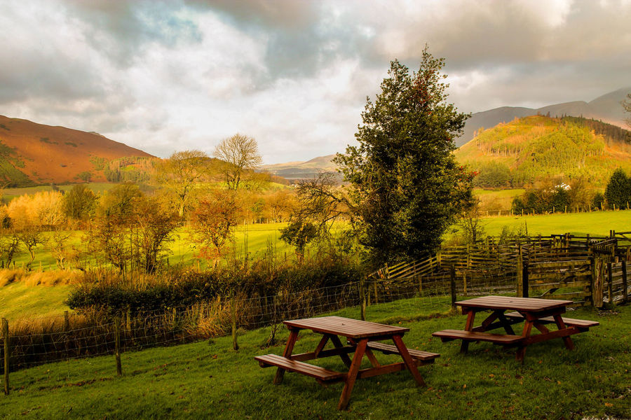 Autumn Beauty In Nature Brauty Chair Cloud - Sky Cold Days Day England Field Grass Lakedistrict Landscape Mountain Nature No People Outdoors Scenics Sky Table Tranquil Scene Tranquility Tree