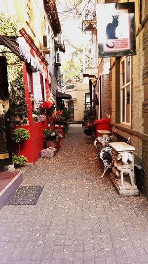 Street Photography Down The Alleyway Decor Dreamland Wandering Around Aimlessly Photography Run Charming Place Design Things Passing By Film Photography Black And White