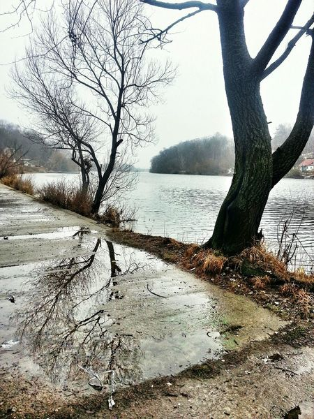 Reflections on the river side, on the banks of the Teteriv River in Zhytomyr, Ukraine. Teteriv Zhytomyr Ukraine Житомир Україна
