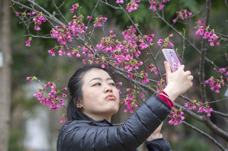 好心情(1) Flower Fragility Pink Color One Person Beauty In Nature Beautiful Woman Outdoors Young Adult Young Women Springtime Kimono Real People Freshness Plant Beauty Growth Day Nature Women Tree