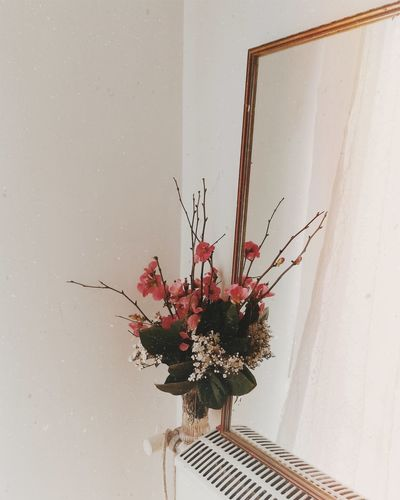 EyeEmNewHere EyeEm Nature Lover Light White Background Flower Home Interior Indoors  Vase Red Fragility Plant No People Nature Freshness Home Showcase Interior Architecture