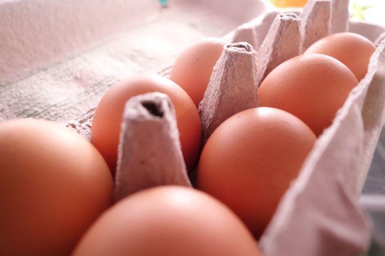 Carton of brown eggs Egg Egg Carton Close-up Food Fragility Macro Brown Eggs Fresh Refridgerator Kitchen EyeEmNewHere EyeEmNewHere