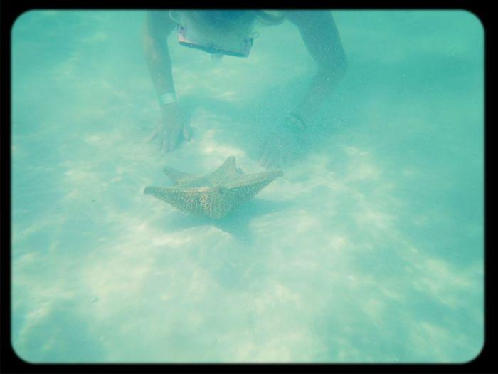 Karibik~vermiss dich ._.~