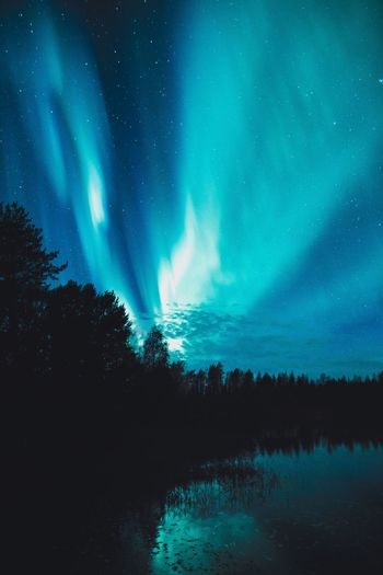 Rising auroras Beauty In Nature Tranquility Scenics - Nature Tranquil Scene Sky Water Night No People Nature Reflection Astronomy Star - Space Aurora Polaris River Northern Lights Tree Landscape Explore Atmospheric Mood Scenics Travel Taking Photos Check This Out Outdoors Photography