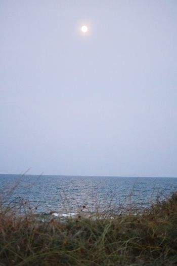 Water Sky Sea Beauty In Nature Horizon Over Water Horizon Scenics - Nature Tranquility Land Nature Beach Tranquil Scene No People Grass Plant Moon Outdoors