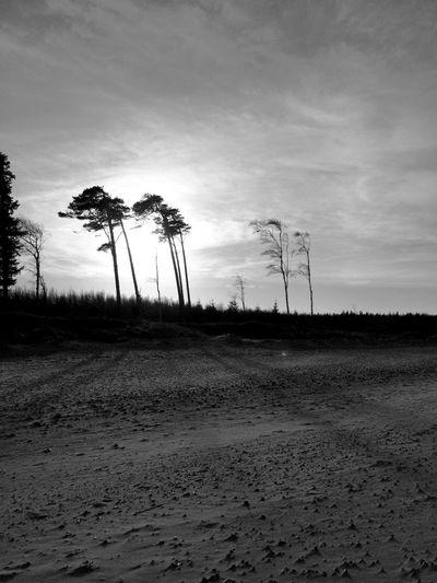 Torffbrücke Graal-Müritz Home Couple Baltic Sea Beach Life Is A Beach