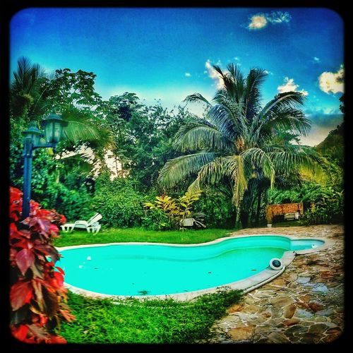 Relaxing Swimming Pool Enjoying Life Martinique