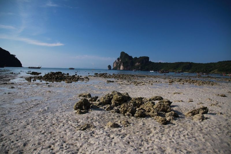 Low tide on tropical island Sea Andaman Ko Phi Phi Bay Low Tide Water Sky Sea Rock Beach Rock - Object Solid Land Scenics - Nature Beauty In Nature Tranquility No People Tranquil Scene Blue Sand Rock Formation Idyllic Outdoors