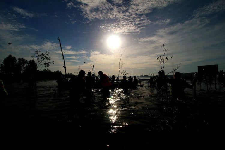 Planting Mangrove Tree HUAWEI Photo Award: After Dark Water Tree Sunset Sea Beach Silhouette Nautical Vessel Reflection Sky Cloud - Sky