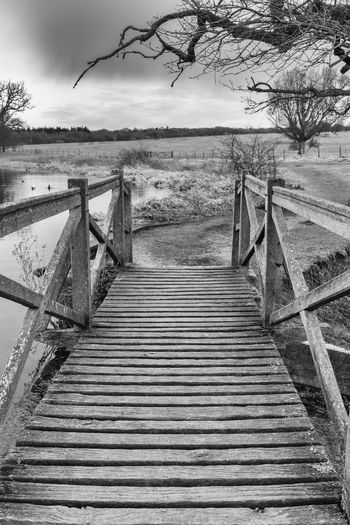 Footbridge over the water, taken in a local parkland. Bridge Bridge View The Way Forward Direction Railing Tree Sky Nature Wood - Material Diminishing Perspective Water Tranquility Footpath Footbridge Black And White Black And White Photography Black And White Collection  Black And White Landscape Spring