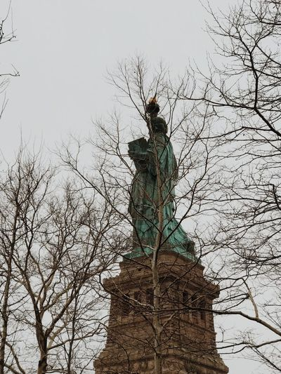 through the trees New York City Statue Of Liberty Statue Low Angle View Branch Outdoors Sculpture Tree Day Bare Tree Sky Clear Sky Nature No People