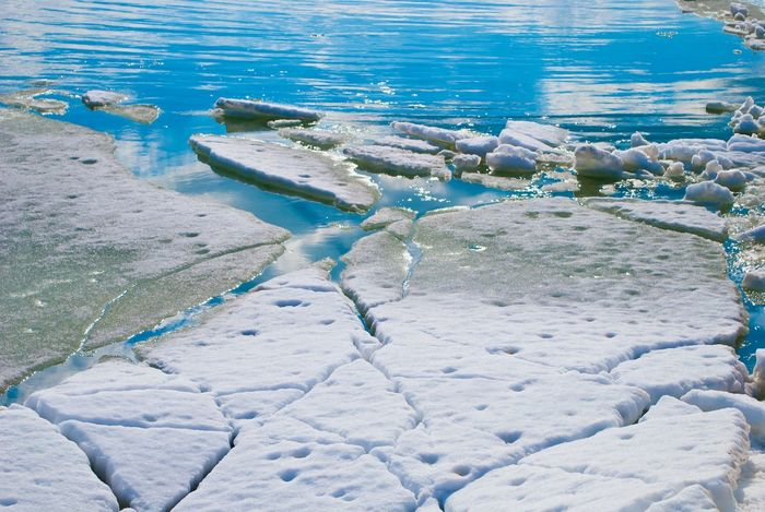 Ukraine Azovsea Ice Water Sunny Day Spring Nature Cristal Clear