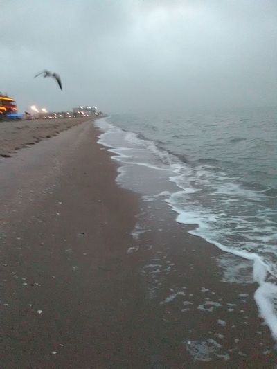 Foggy Morning Sea Water Beach Nature Wave Outdoors Beauty In Nature Horizon Over Water Sand Landscape_Collection Looking At View EyeEm Best Shots Nature_collection Gulf Of Mexico Beach Photography Beach Life No Edit/no Filter EyeEm Challenge Eyeem Photography Eyeem Photo Color Eyeem Best Shots Eyeem Gallery