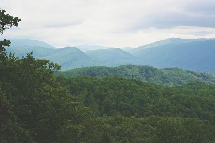 Mountains Rolling Hills Great Smoky Mountains  Great Smoky Mountains National Park Landscape Landscape_photography Moody Sky Cloudy Cloudy Day Clouds And Sky Tennessee Landscapes With WhiteWall