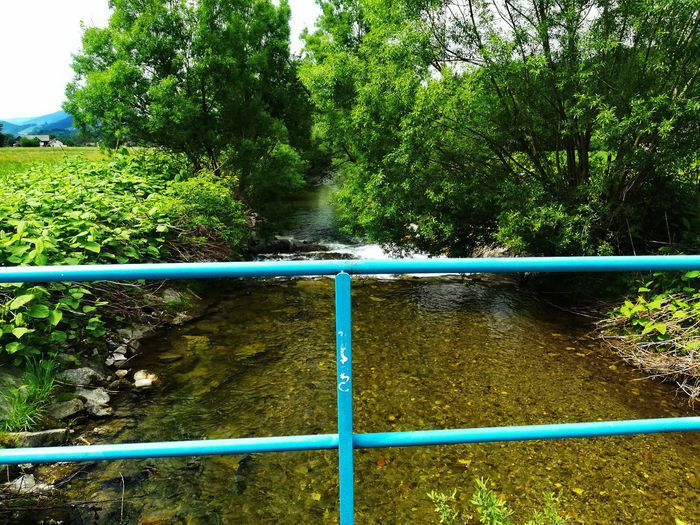 Beautiful little river near my home:) Nature River