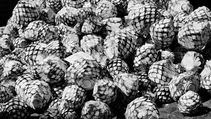 Abundance Large Group Of Objects Backgrounds Full Frame No People Food Stack Day Nature Outdoors Tequilla Guadalajara, Mexico Cooking EyeEm Selects Agave Tequila!