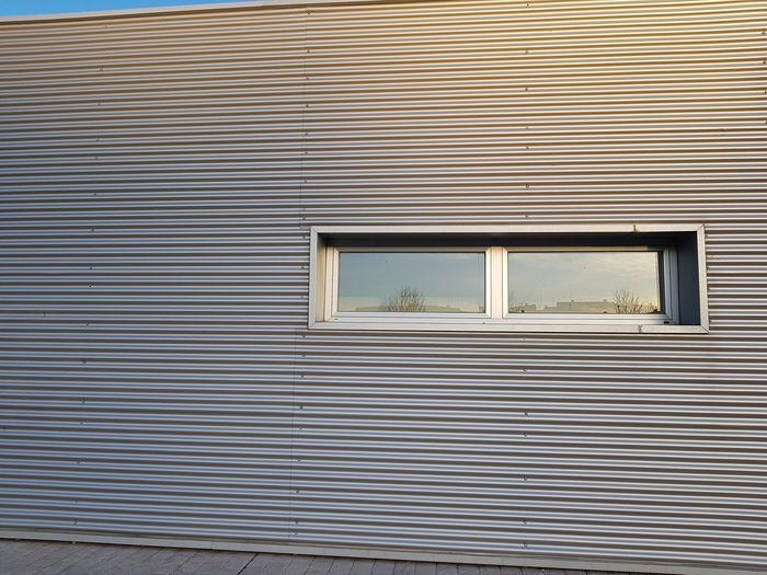 Window, metallic facade