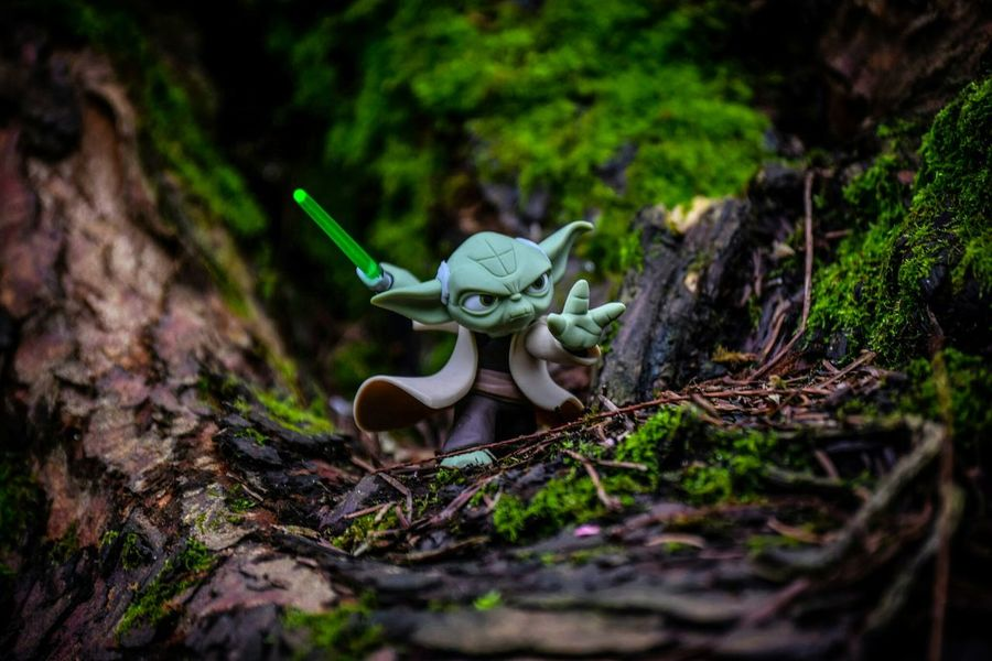 Toy Photography Outdoor Toy Photography Outdoor Photography Starwars Yoda Master Jedi Jedimaster Disney DisneyInfinity
