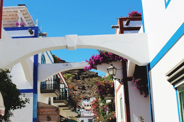 Architecture Built Structure Outdoors Flower Sky Nature Day No People Gran Canaria Village Small Street Mountain