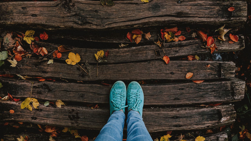 Jeans and green shows on wooden patheway Autumn Autumn colors Autumn Leaves Jeans National Park Plitvice Lakes National Park Shoe Wood Body Part Directly Above Female Girl High Angle View Human Leg Leaf Leaves One Person Outdoors Park Plitvice Plitvice National Park Sneakers Standing Women Wood - Material
