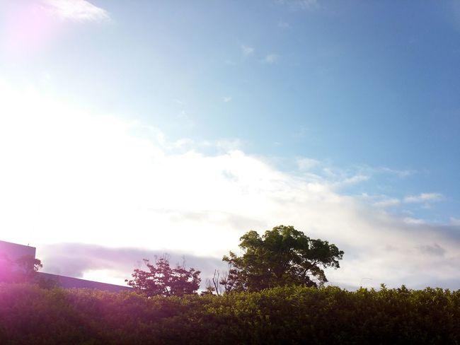 Nagasaki, Japan Traveling Green Cloud And Sky EyeEm Best Shots