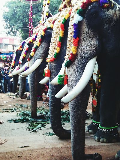 Kerala.... Festivals Style....