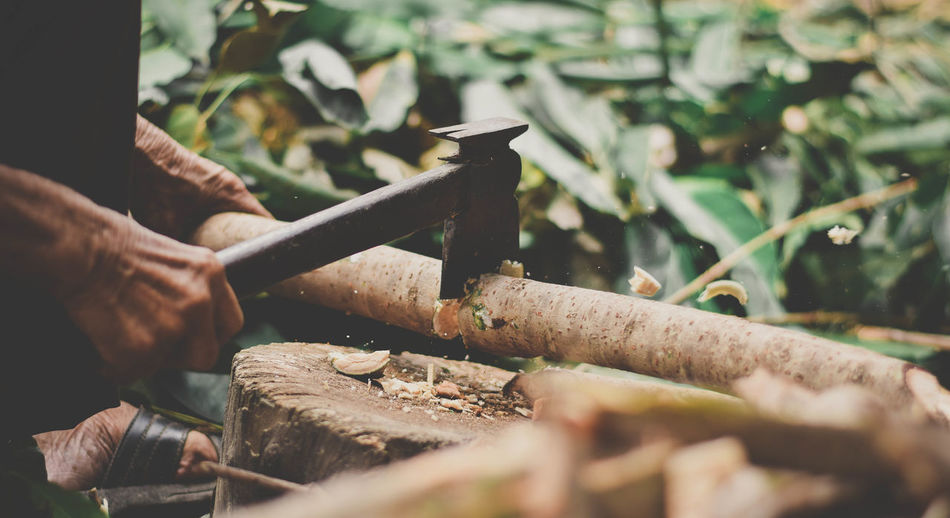 Cropped hands of worker cutting wood with axe