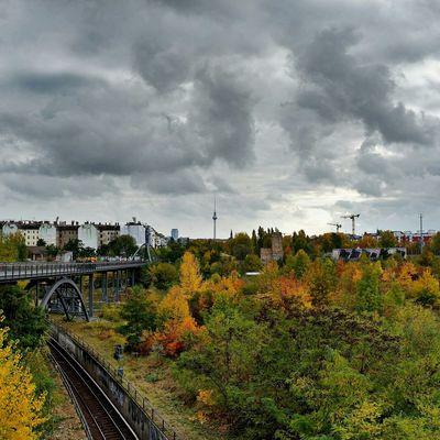 Herbst Autumn Prenzlauerberg